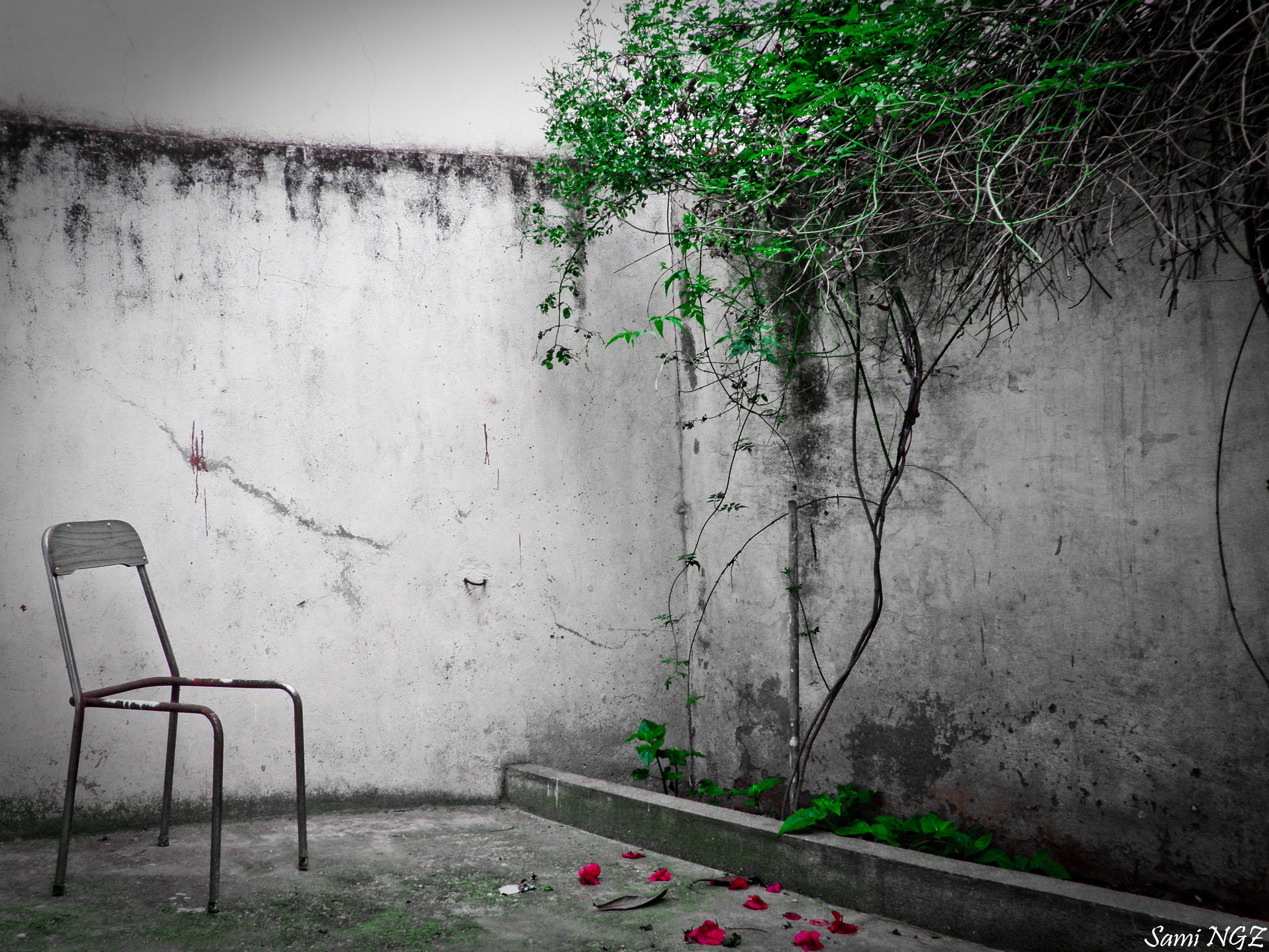 La vie au coin de l'oubli